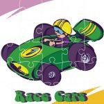 سيارات السباق بانوراما